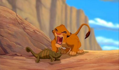 How many times Simba roar at the chameleon ?