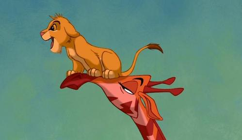 How many giraffes throw Simba and Nala up in the air?