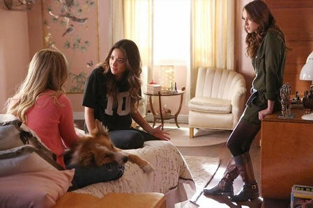Who stayed in Alison's old room when her parents where away?