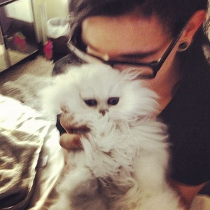 What is Skrillex's cat's name?
