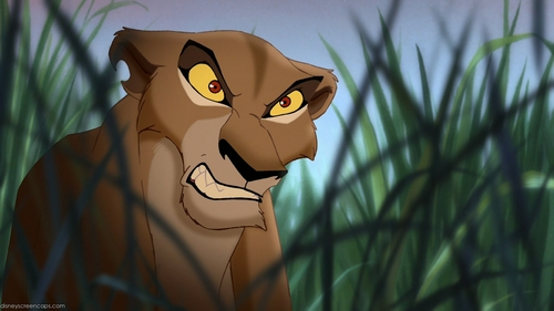 T/F. Zira is the only character who has notched ear.