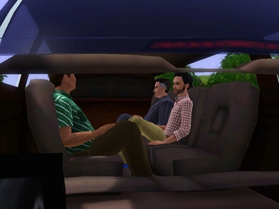 In what are these Sims in?