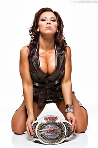 In 2011, Mickie James simultaneously held the TNA Knockouts Championship and what other title?