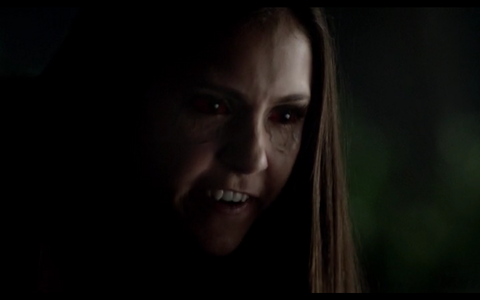 Elena Gilbert wanted so much to be a vampire.