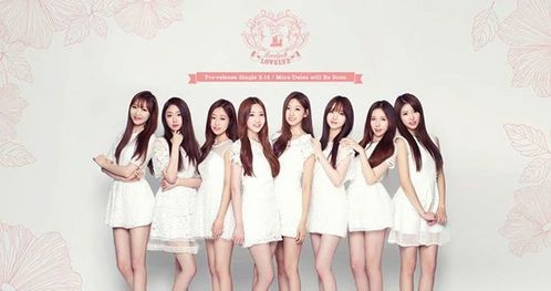 Who is the Face of the Group of Lovelyz?