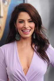 When did Sarah Shahi have her twins?