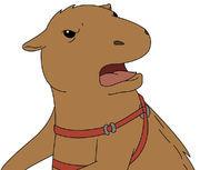 Captain Flarty's pet capybara's name is _____?