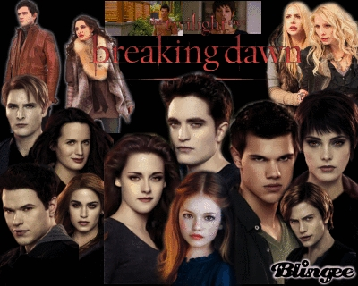 Who directed both installments of Breaking Dawn ?