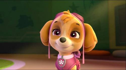 In the fic PAW Patrol: New Generation: How many pups did