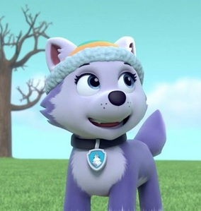 What is Everest's membership number of the PAW Patrol?