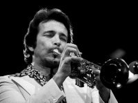 """""""Rise"""" was a #1 for Herb Alpert in 1979"""