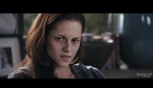 What blood type did Bella drink in Breaking Dawn ?