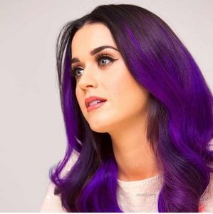 What are fans of Katy Perry called?