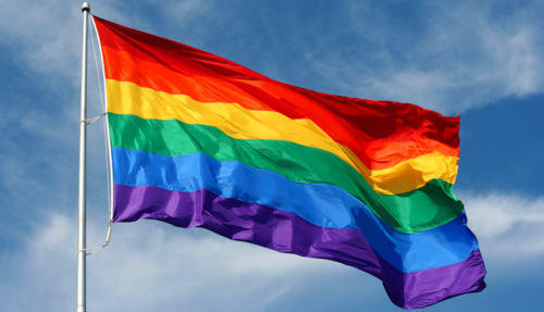 Yet another Yes or No question. The Rainbow Flag is the universal symbol of the LGBT community worldwide.