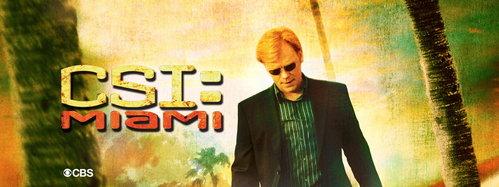 What 年 did CSI: Miami begin?