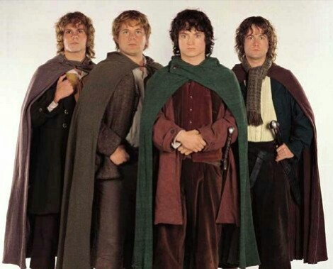 On The Lord Of The Rings franchise Frodo,Sam,Merry & Pippin all belong to same race of Middle-earth. What race do they all belong to?