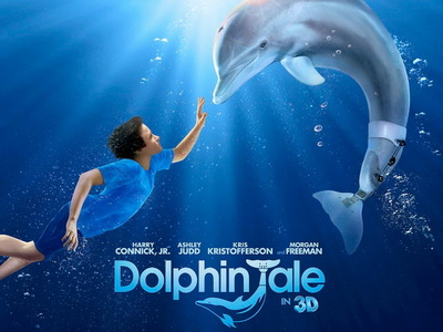 What is the name of the delfino in 'Dolphin Tale' ?