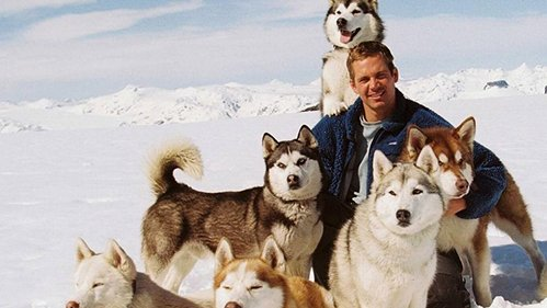 In the movie 'Eight Below',what was Paul Walker's character's name?