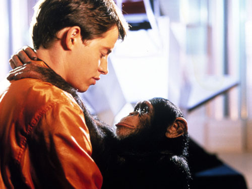 What was the name of the chimpanzee in the movie 'Project X' ?