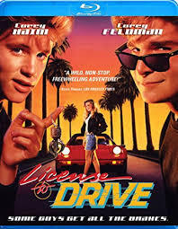 What was Les's twin sister's name in 'License to Drive' ?