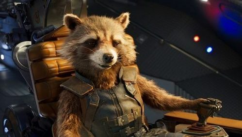 What does Rocket Raccoon call Thor in Infinity War?