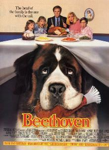 What color is the camera view when Beethoven's eye view is shown?