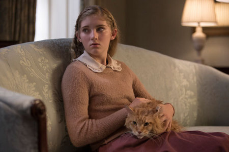 What is the name of Prim's cat in ' The Hunger Games' movie series?