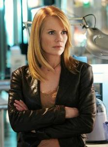 What was Catherine's job before she became a CSI?