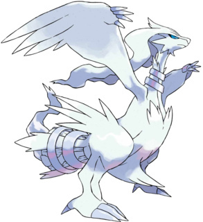 What type of pokemon is Reshiram?