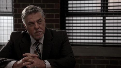 Who plays the character Vince Korsak?
