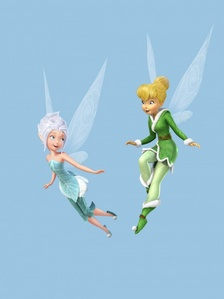 Who's wings are identical?