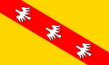 This is the flag of which french region ?