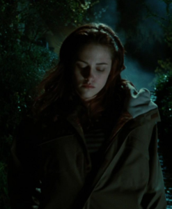 What is the address of the Thunderbird and তিমি bookstore Bella wrote down in Twilight movie?