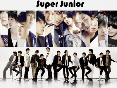 Favorite member from Super Junior?