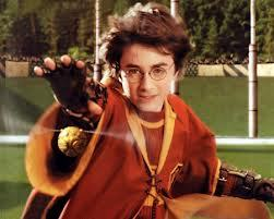 On which mes did Harry play his first ever Quidditch match ???