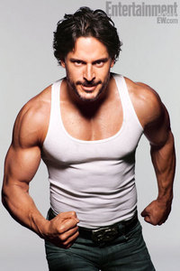 Is Alcide a shifter or a werewolf?