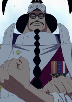 Who replaced Sengoku as fleet admiral?