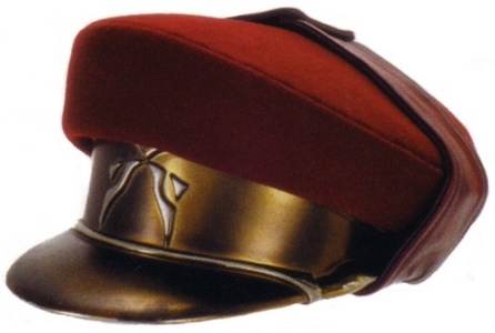 This is a Naboo Royal Guard hat, what rank of guard wears this?