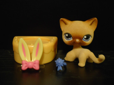 What Is The Number Of Angelina Davis From Lps Popular The
