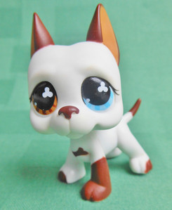 What is the number of Tom Dawson from LPS Popular?