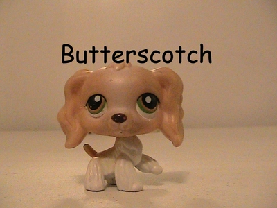 What is the number of Butterscotch from mlpprincessesrule's Meg's Marvelous TV Show?