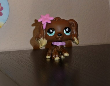 What is the number of Desiree Dillon from LPS Haunted?