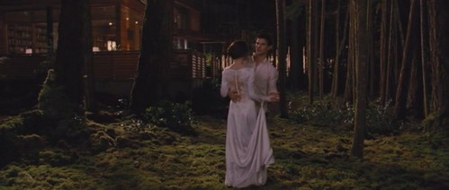 Did Bella wear her wedding shoes in this scene?