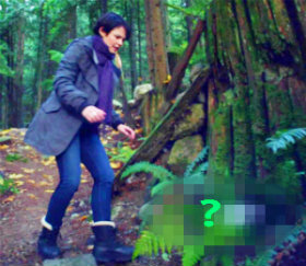 """In 1x10 """"7:15 A.M."""", what kind of an animal does Mary Margaret find injured in the woods?"""