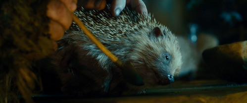 MOVIE: What is the name of the poisoned porcupine?