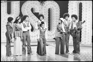Michael Jackson, alongside his siblings, were the first African-American family to have a successful top-rated variety, which ran on CBS from 1976-77