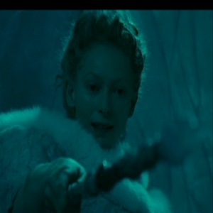 In the film how many things do we actually see Jadis turn to stone with her wand?