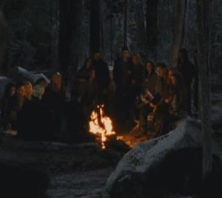 How many characters are not around the fire?