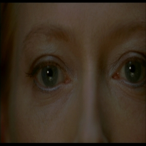 A close up of Tilda's famous eyes, looking at a shrimp salad but from which film?