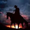 Cowboy valleyer photo